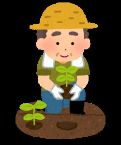 特殊な農法にチャレンジ