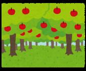 果樹栽培ブログのメリット